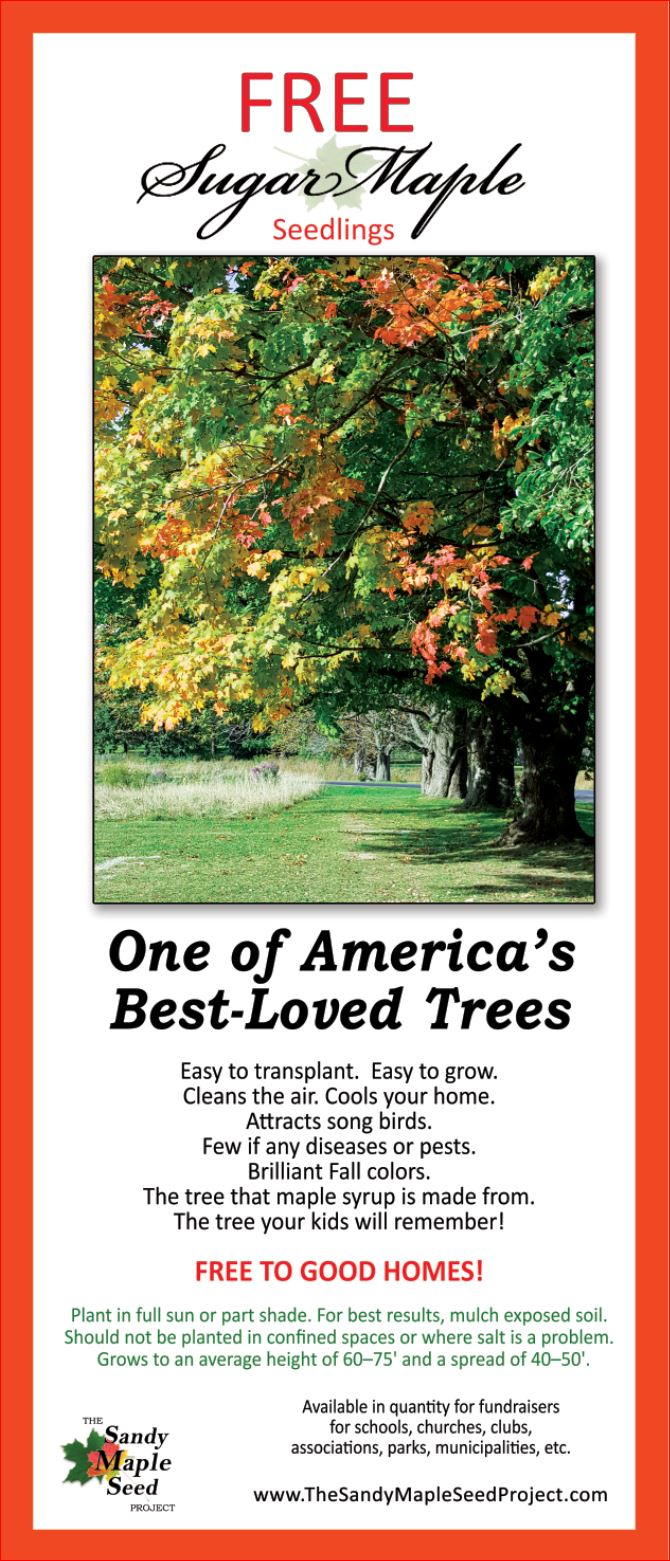Plant a Tree, Clean the Air – Page 4 – Free Sugar Maple Seedlings to ...