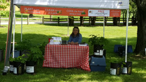 We set up our booth in a picture-perfect spot in the shade of 2 large maples.
